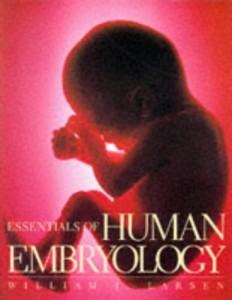 human e
